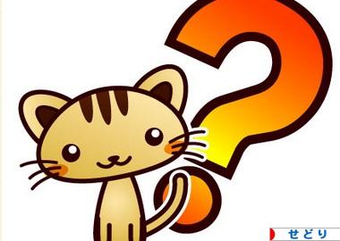 ハテナ 質疑応答  せどり パチンコ ネコ