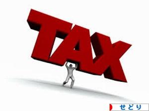 税金 TAX せどり