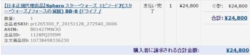 24800 円