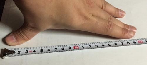 手の大きさ