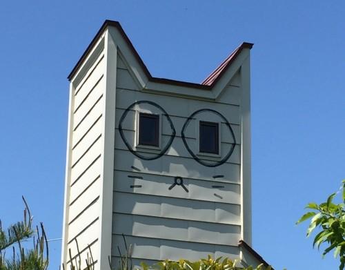 ネコ 建物