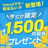 ヤフオクの支払いに最適!Yahoo!マネーを実際に使ってみた感想 レビュー